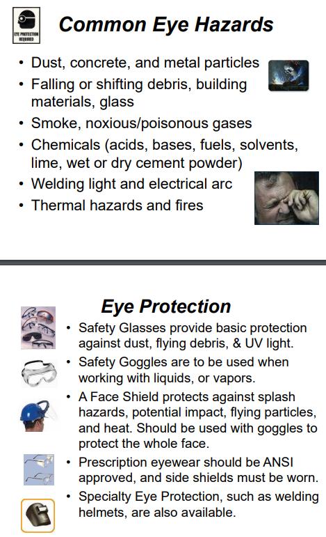 Georgia18 UGA PPE 1 eye