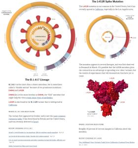 Coronavirus Variants-Mutations @nytimes