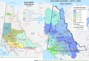 Canada53 2020-forest-health-report @EMRYukon