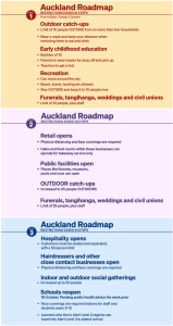 World193 The 3 steps to easing Auckland restrictions what you need to know @rnz_news,@VinayRanchhod